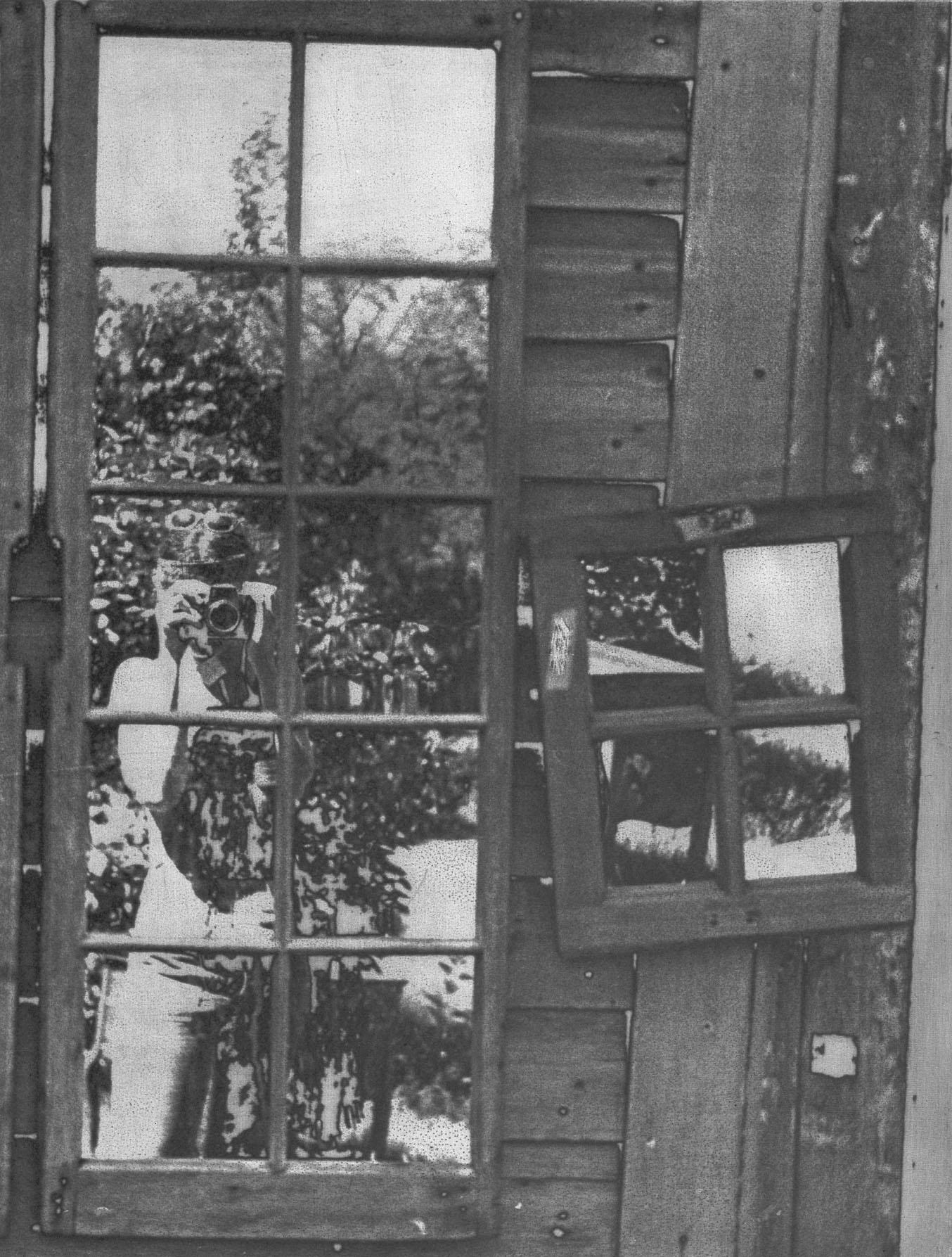 12-window